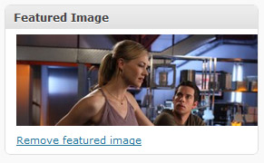 The WordPress Featured Image Meta Box...